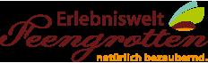 Logo von Saalfelder Feengrotten und Tourismus GmbH